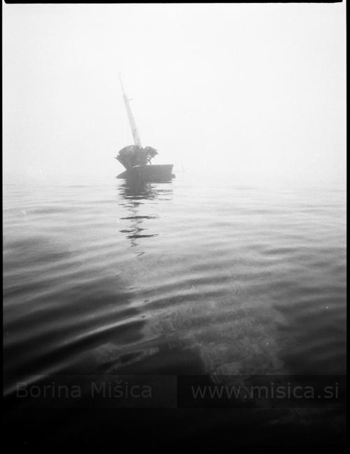 BorinaMisicaBronica5-3