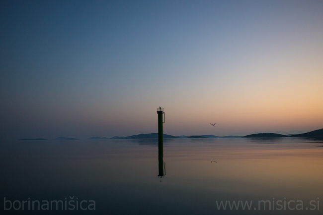 BorinaMisica-plovba-352