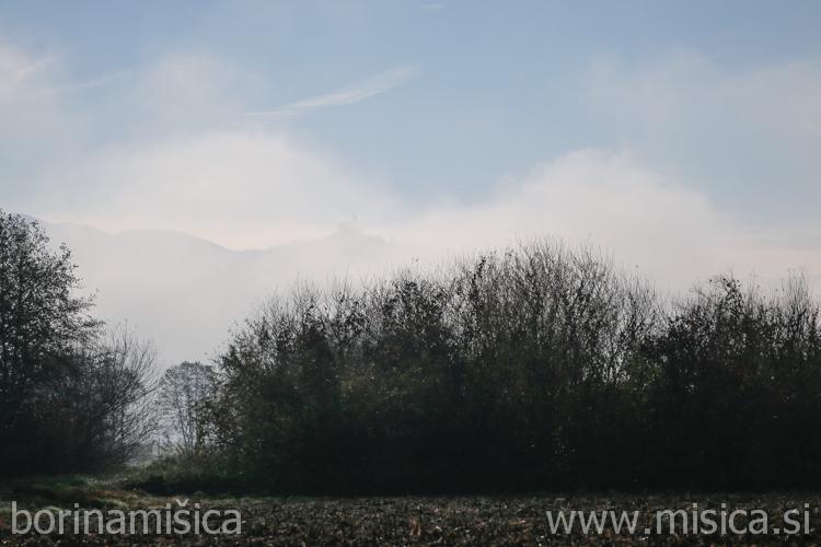 BorinaMisica-Barje-68